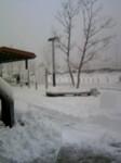 100202_112819雪1.JPG