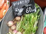 ヒルズマルシェ 野菜1.jpg
